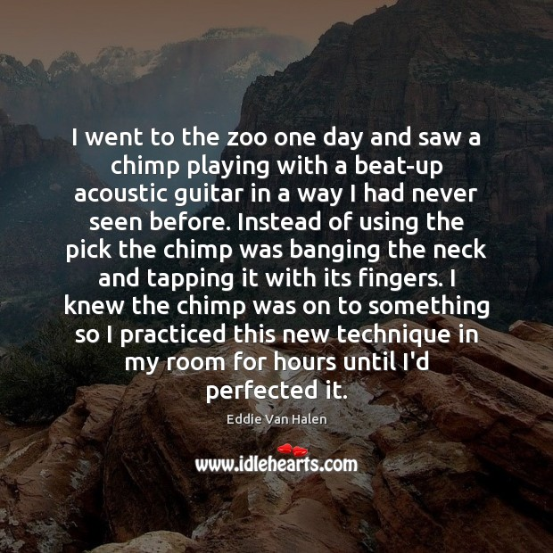 I went to the zoo one day and saw a chimp playing Eddie Van Halen Picture Quote