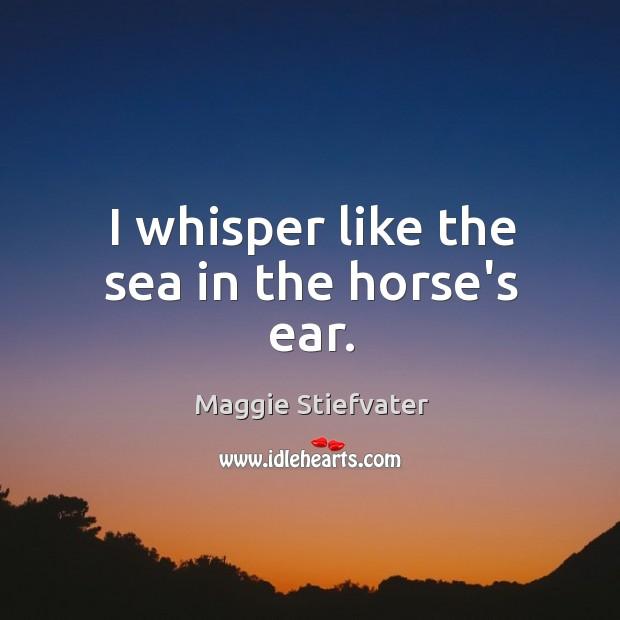I whisper like the sea in the horse's ear. Image