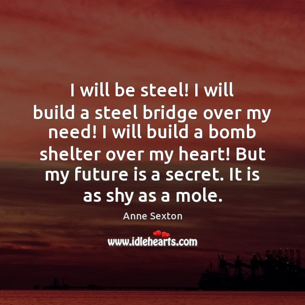 I will be steel! I will build a steel bridge over my Image