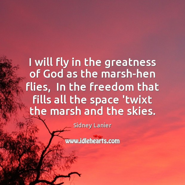 I will fly in the greatness of God as the marsh-hen flies, Image