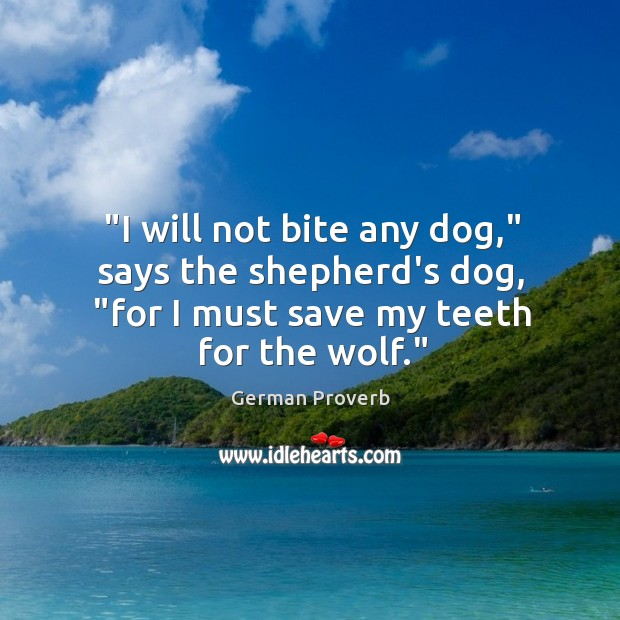 """""""I will not bite any dog,"""" says the shepherd's dog, """"for I must save my teeth for the wolf."""" German Proverbs Image"""