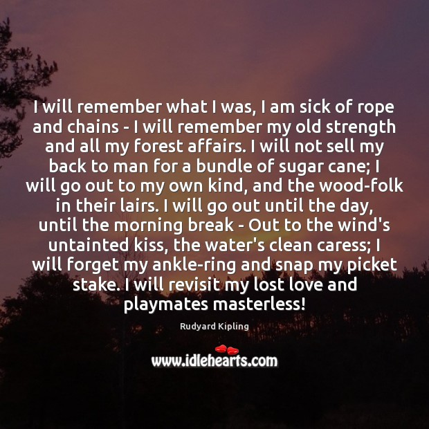 I will remember what I was, I am sick of rope and Lost Love Quotes Image