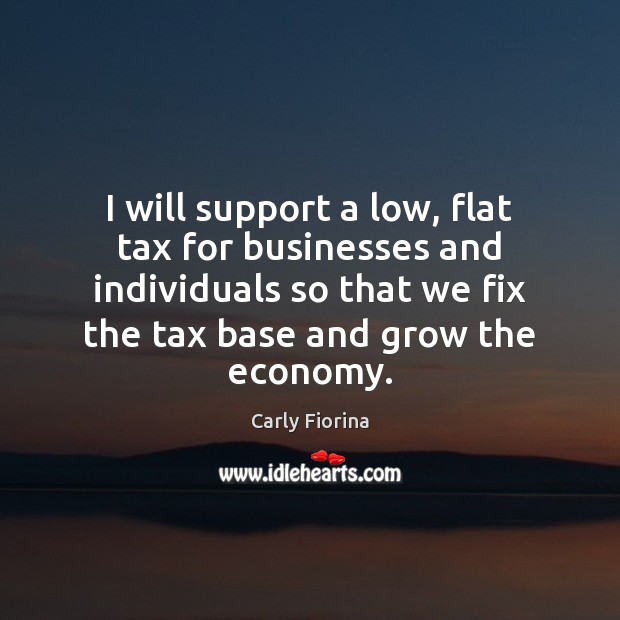 Image, I will support a low, flat tax for businesses and individuals so