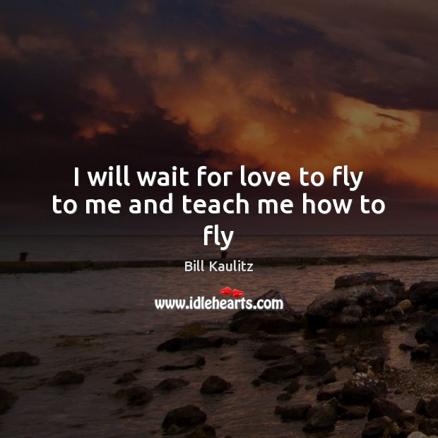 Image, I will wait for love to fly to me and teach me how to fly
