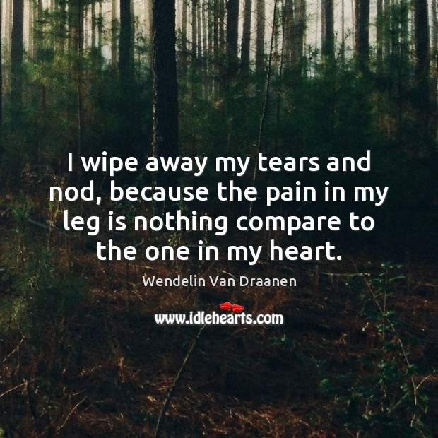 I wipe away my tears and nod, because the pain in my Wendelin Van Draanen Picture Quote