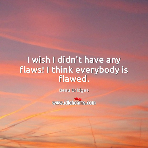 I wish I didn't have any flaws! I think everybody is flawed. Beau Bridges Picture Quote