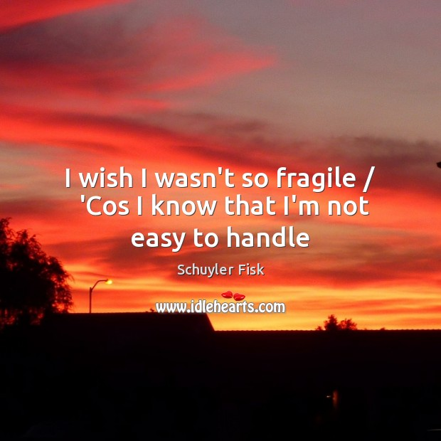 I wish I wasn't so fragile /  'Cos I know that I'm not easy to handle Image