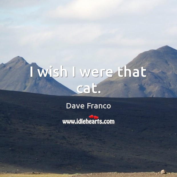 Dave Franco Picture Quote image saying: I wish I were that cat.