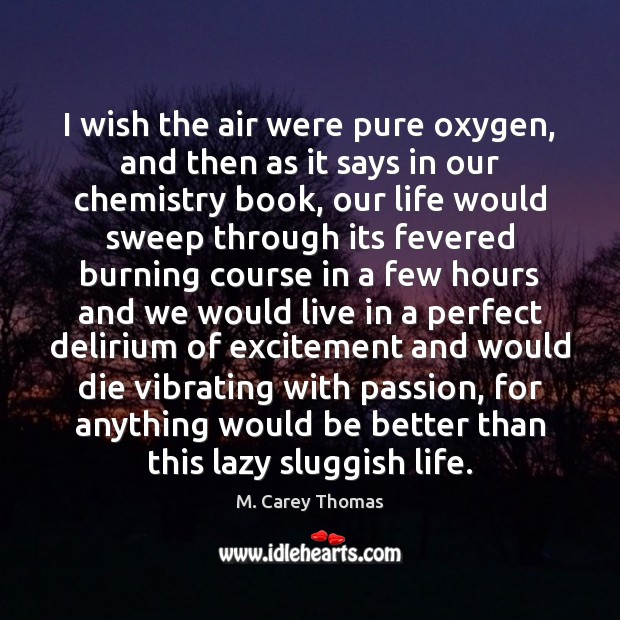 I wish the air were pure oxygen, and then as it says Image