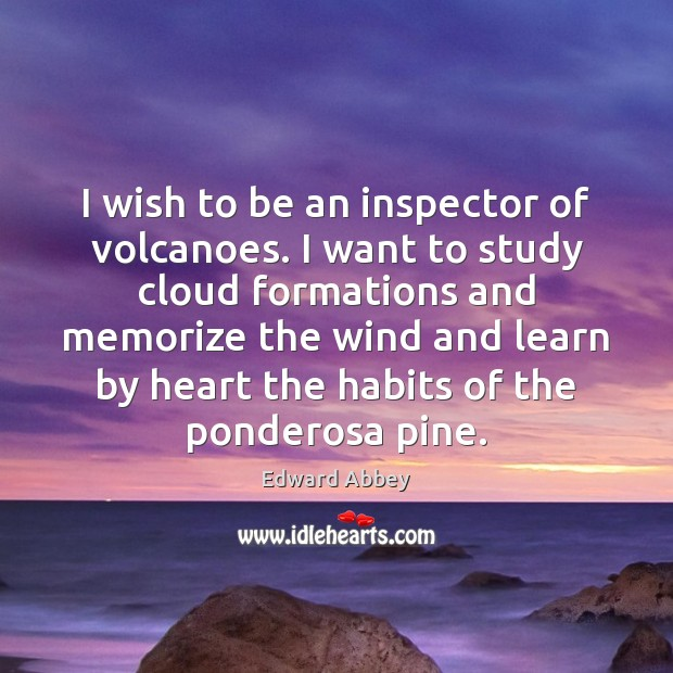 I wish to be an inspector of volcanoes. I want to study Image