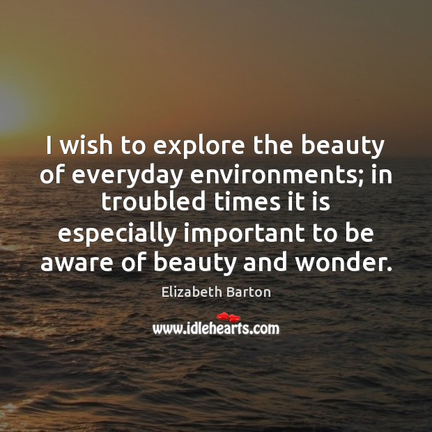 I wish to explore the beauty of everyday environments; in troubled times Elizabeth Barton Picture Quote