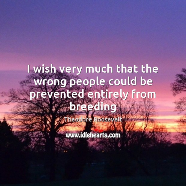 I wish very much that the wrong people could be prevented entirely from breeding Theodore Roosevelt Picture Quote