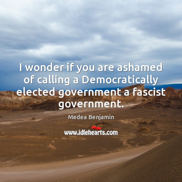 I wonder if you are ashamed of calling a Democratically elected government Image