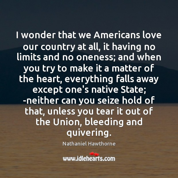 I wonder that we Americans love our country at all, it having Nathaniel Hawthorne Picture Quote