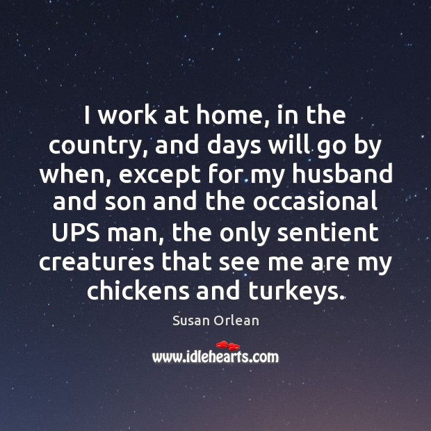 I work at home, in the country, and days will go by Susan Orlean Picture Quote