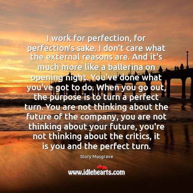 I work for perfection, for perfection's sake. I don't care what the I Don't Care Quotes Image