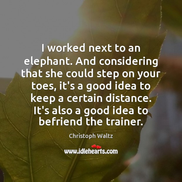 I worked next to an elephant. And considering that she could step Christoph Waltz Picture Quote