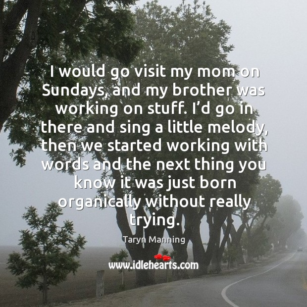 I would go visit my mom on sundays, and my brother was working on stuff. Taryn Manning Picture Quote