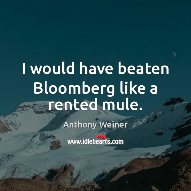 I would have beaten Bloomberg like a rented mule. Image