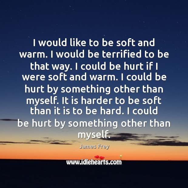 I would like to be soft and warm. I would be terrified James Frey Picture Quote