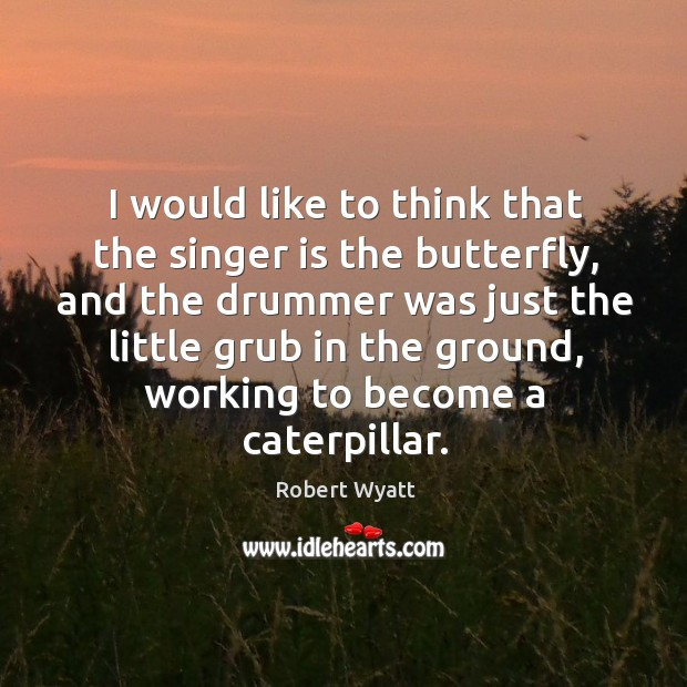 I would like to think that the singer is the butterfly, and the drummer was just the Robert Wyatt Picture Quote