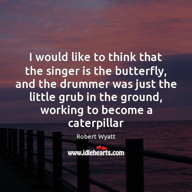 I would like to think that the singer is the butterfly, and Robert Wyatt Picture Quote
