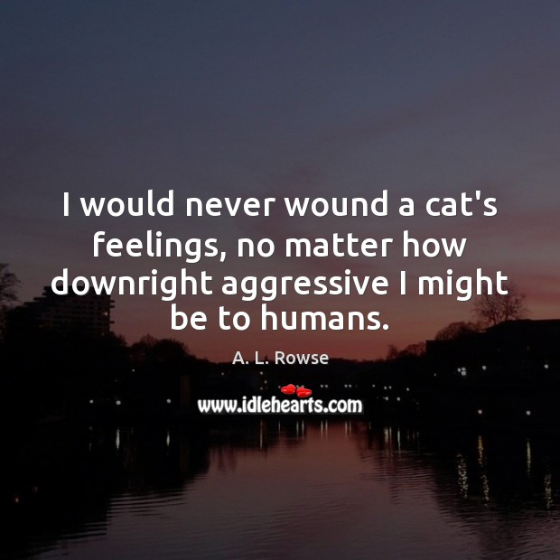 Image, I would never wound a cat's feelings, no matter how downright aggressive