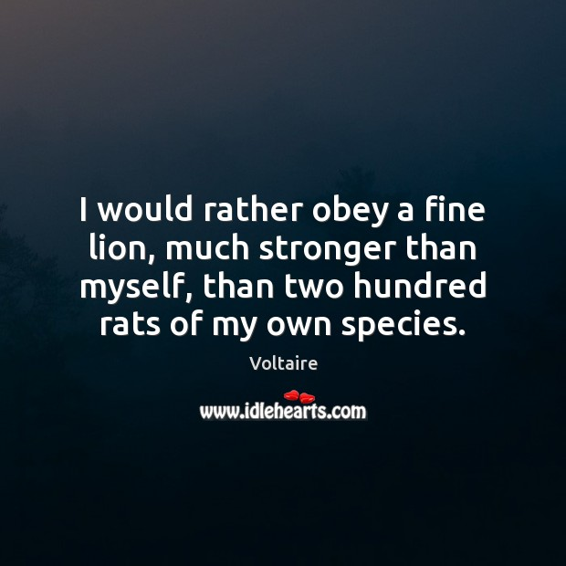 I would rather obey a fine lion, much stronger than myself, than Voltaire Picture Quote