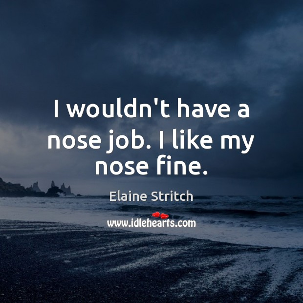 I wouldn't have a nose job. I like my nose fine. Elaine Stritch Picture Quote