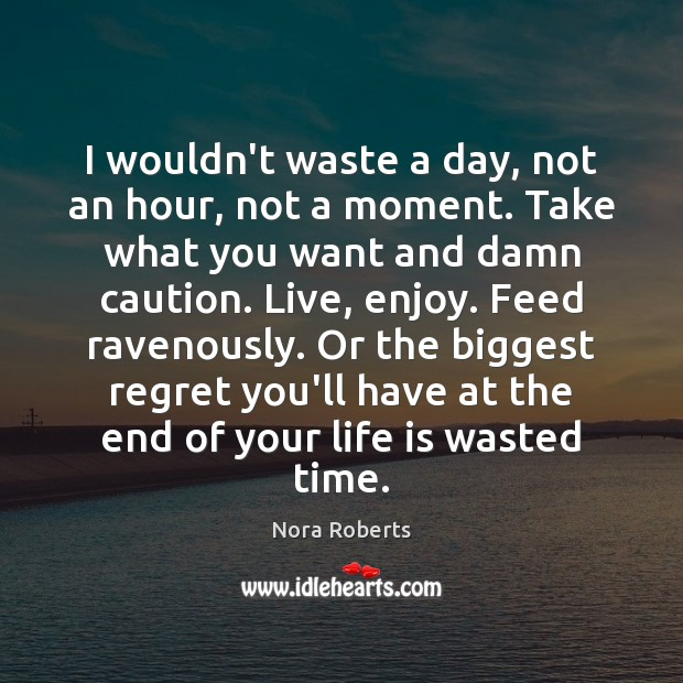 I wouldn't waste a day, not an hour, not a moment. Take Nora Roberts Picture Quote