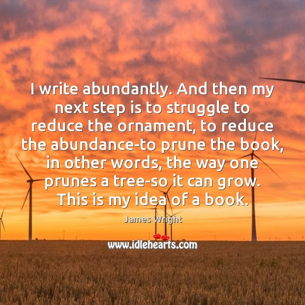 Image, I write abundantly. And then my next step is to struggle to