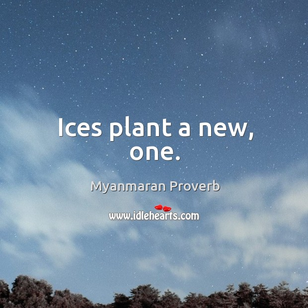 Ices plant a new, one. Myanmaran Proverbs Image