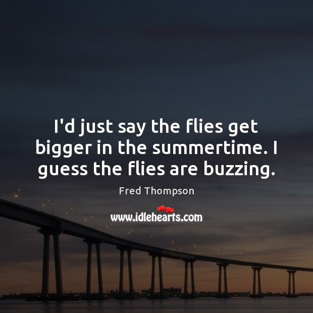 I'd just say the flies get bigger in the summertime. I guess the flies are buzzing. Image