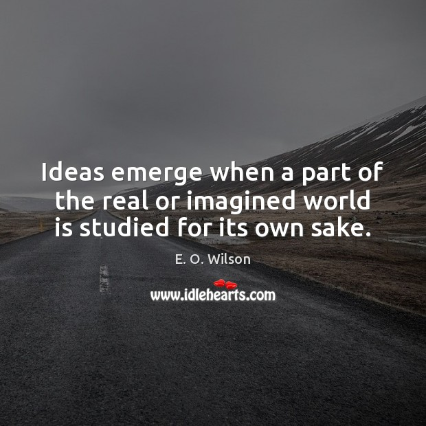 Image, Ideas emerge when a part of the real or imagined world is studied for its own sake.