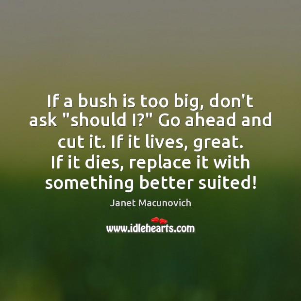 """If a bush is too big, don't ask """"should I?"""" Go ahead Image"""