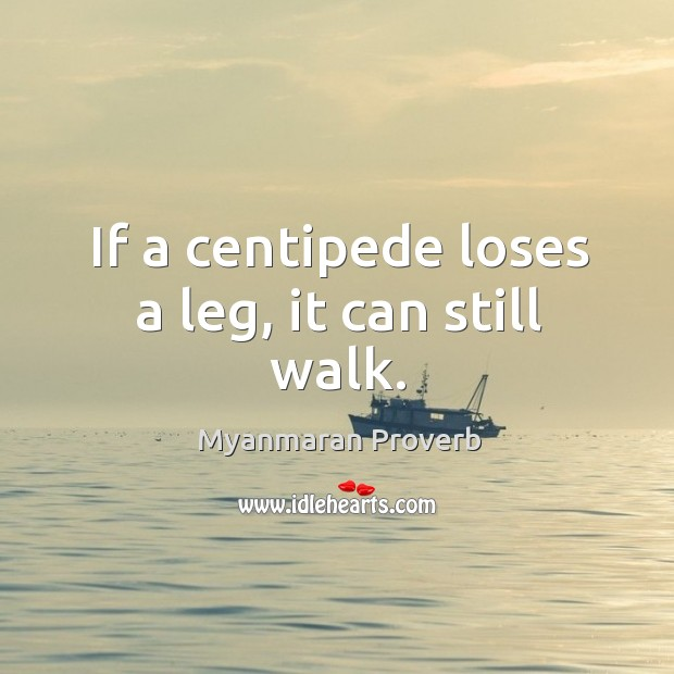 If a centipede loses a leg, it can still walk. Myanmaran Proverbs Image