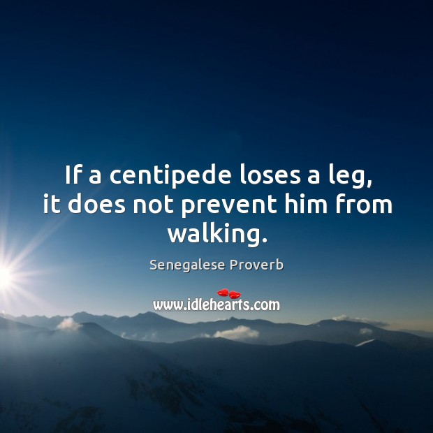 If a centipede loses a leg, it does not prevent him from walking. Senegalese Proverbs Image