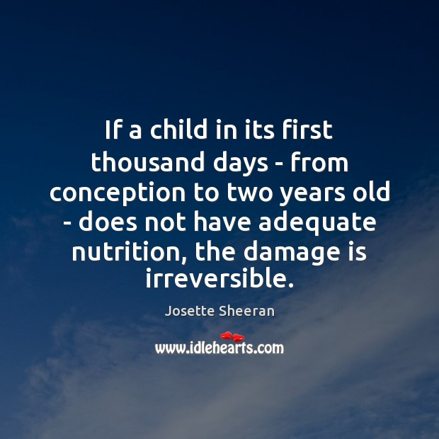 If a child in its first thousand days – from conception to Image