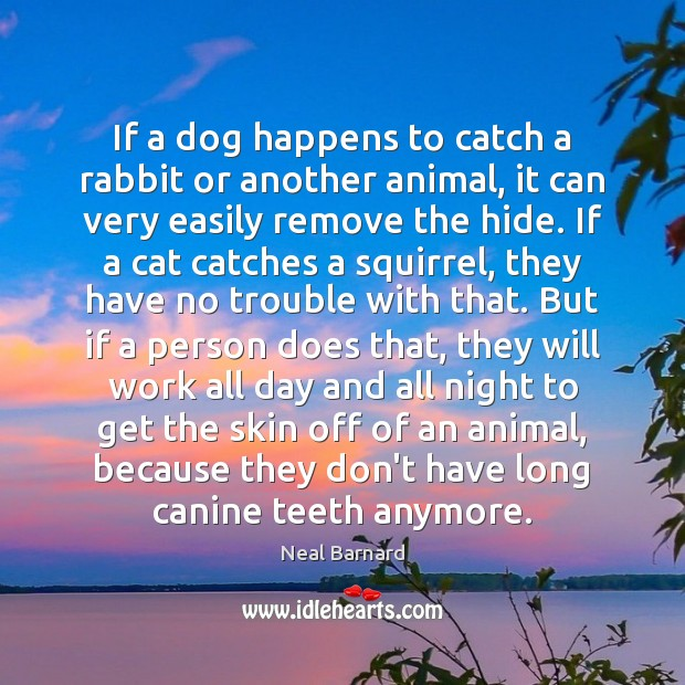 If a dog happens to catch a rabbit or another animal, it Image
