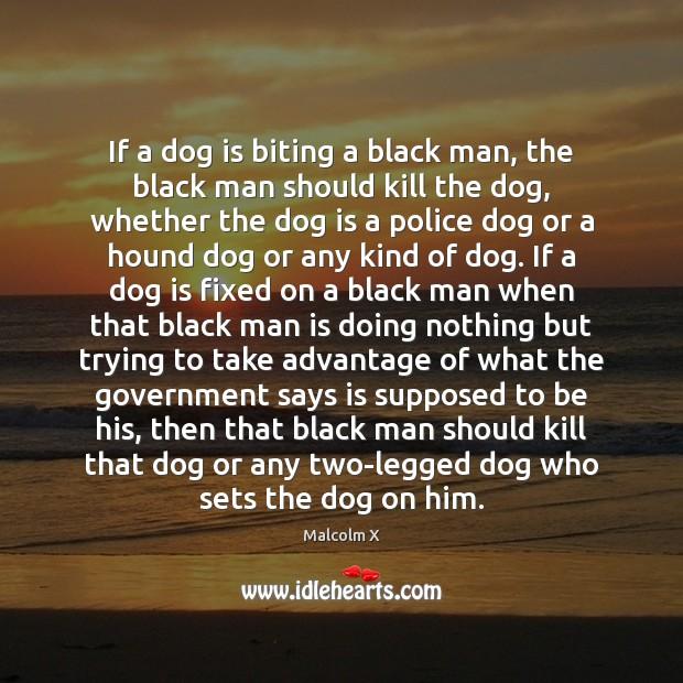 Image, If a dog is biting a black man, the black man should