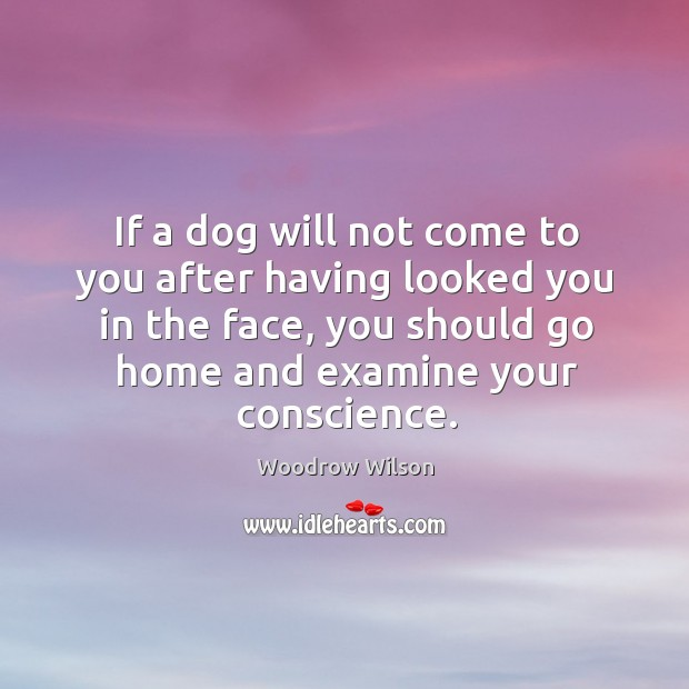 If a dog will not come to you after having looked you in the face, you should go home and Image