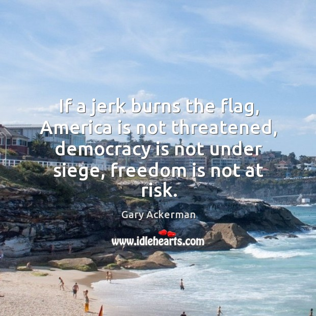 If a jerk burns the flag, america is not threatened, democracy is not under siege, freedom is not at risk. Image