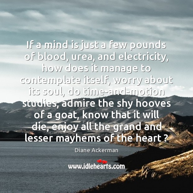 If a mind is just a few pounds of blood, urea, and Diane Ackerman Picture Quote