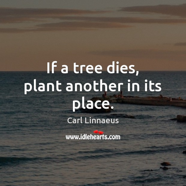 Image, If a tree dies, plant another in its place.