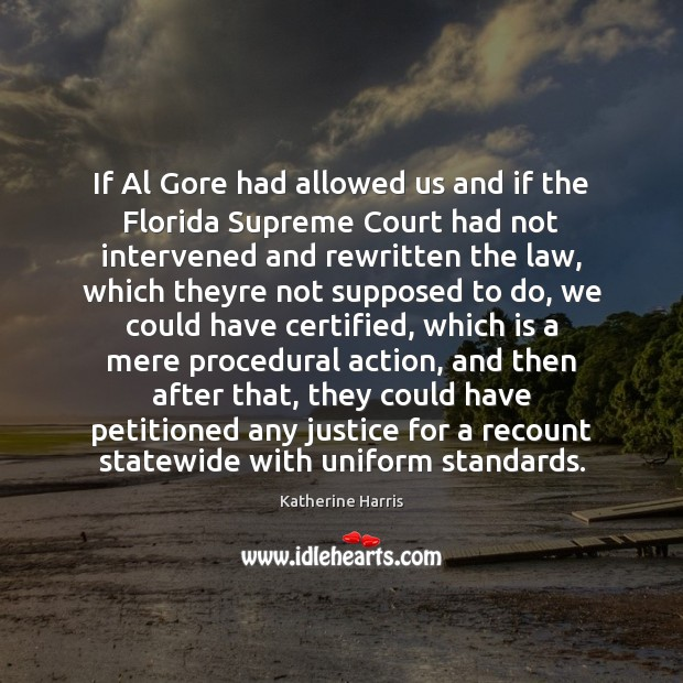 If Al Gore had allowed us and if the Florida Supreme Court Image