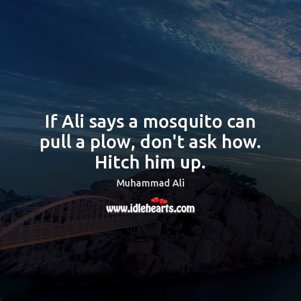 Image, If Ali says a mosquito can pull a plow, don't ask how. Hitch him up.