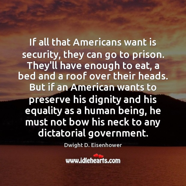 If all that Americans want is security, they can go to prison. Image
