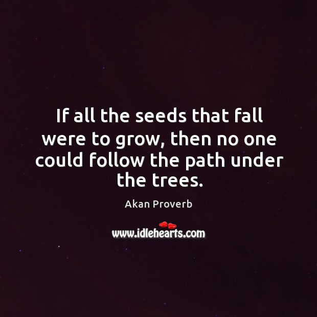 If all the seeds that fall were to grow, then no one could follow Akan Proverbs Image