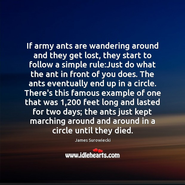 If army ants are wandering around and they get lost, they start James Surowiecki Picture Quote