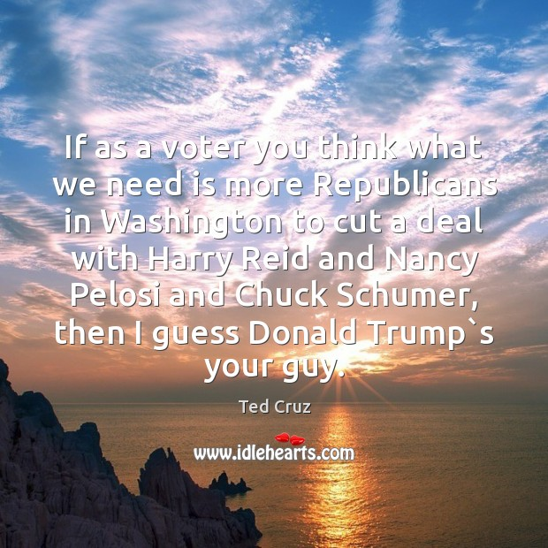 If as a voter you think what we need is more Republicans Image